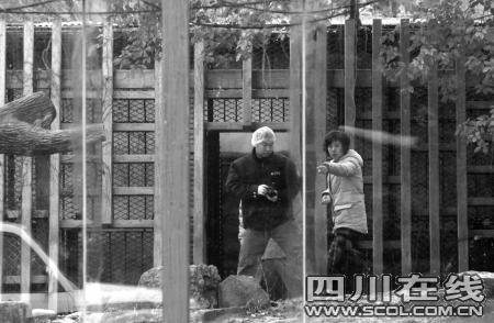 上海动物园老虎咬死饲养员-安全信息-四川
