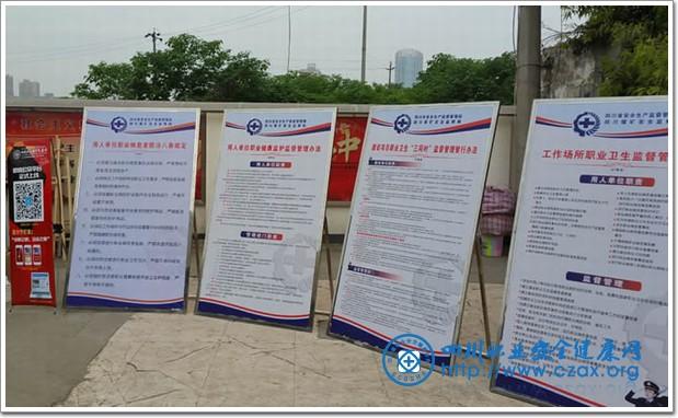 """此外,活动现场摆放宣传展板20余张,横幅10余条,发放了""""健康中国,职业"""